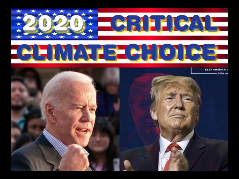 2020 Choice Biden Trump Web Image 1
